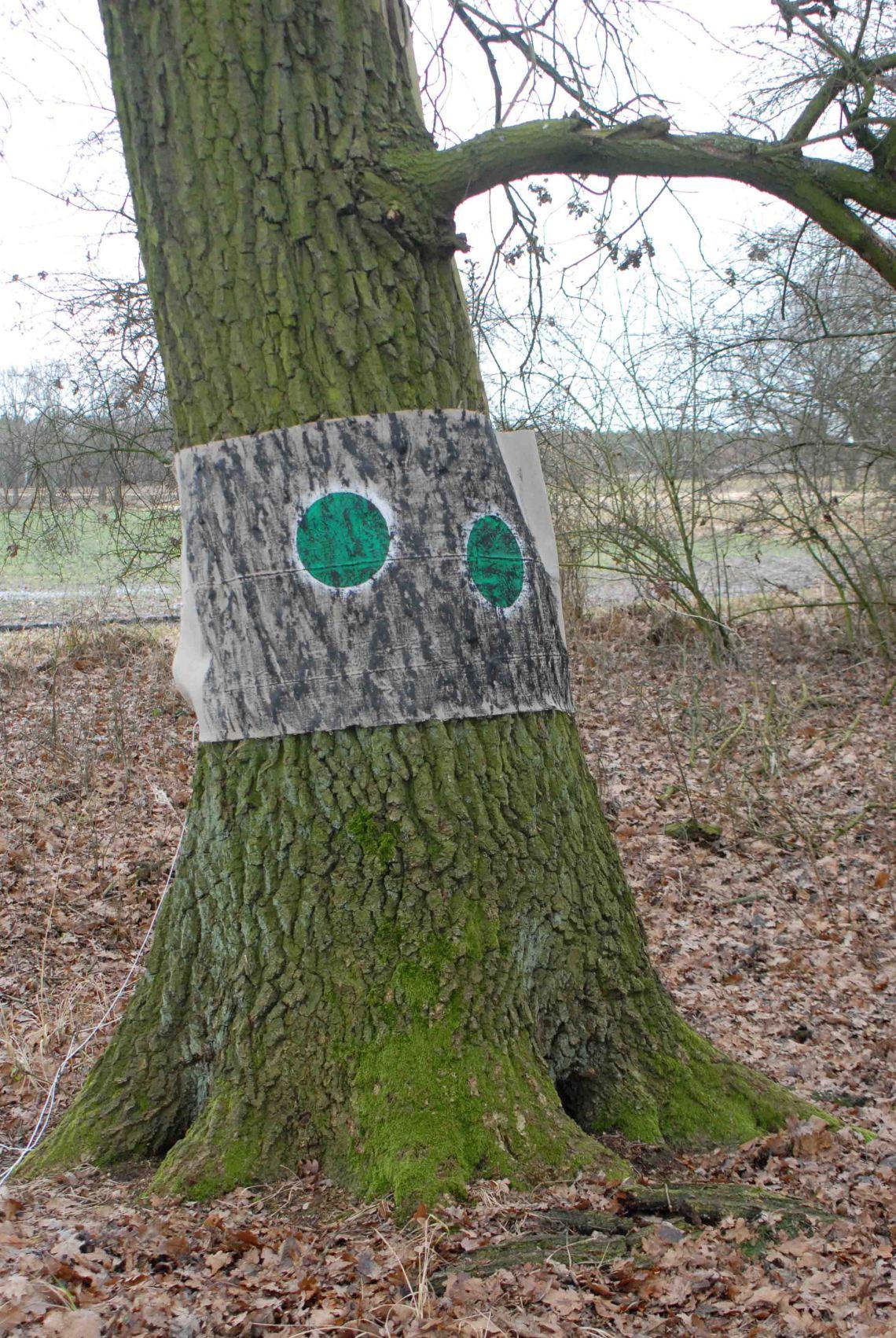 Punkt Baum